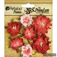 Набор объемных цветов (диких роз) Petaloo - Penny Lane Mini Wild Roses x7 - Antique Red