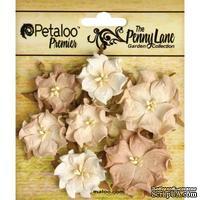 Набор объемных цветов (диких роз) Petaloo - Penny Lane Mini Wild Roses x7 - Antique Beige