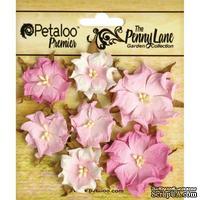 Набор объемных цветов (диких роз) Petaloo - Penny Lane Mini Wild Roses x7 - Soft Pink