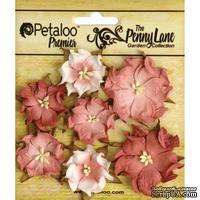Набор объемных цветов (диких роз) Petaloo - Penny Lane Mini Wild Roses x7 - Antique Rose