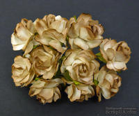 Дикая роза 2-tone Brown, 30 мм, 1 шт.