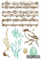 Акриловые штампы от компании Prima - Songbird