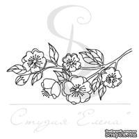 Штамп от Питерского Скрапклуба - Цветы Сакуры 3