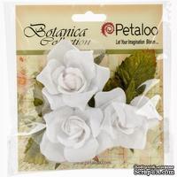 Набор цветов Petaloo - Botanica Fairy Roses - White