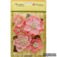 Набор цветов Petaloo - Botanica Magnolia Mix - Coral