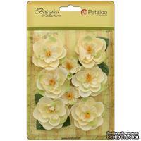 Набор цветов Petaloo - Botanica Ranunculus - Ivory
