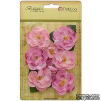 Набор цветов Petaloo - Botanica Ranunculus - Soft Pink