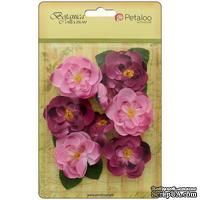 Набор цветов Petaloo - Botanica Ranunculus - Fuchsia