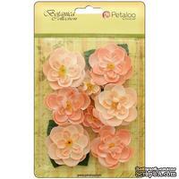 Набор цветов Petaloo - Botanica Ranunculus - Peach
