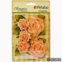 Набор цветов Petaloo - Botanica Garden Roses - Peach