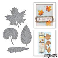 Нож для вырубки от Spellbinders - All Leaves