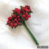 Веточки с полупрозрачными маленькаими ягодками, цвет красный, 1 пучок из 12 штук