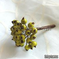 Ягоды круглые, цвет зеленый, пучок из 32 штук
