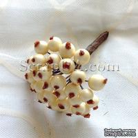 Ягоды круглые, цвет кремовый, пучок из 32 штук