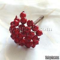 Ягоды круглые, цвет красный, пучок из 32 штук