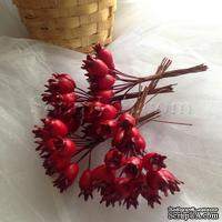 Шиповник, цвет красный, пучок из 12 штук