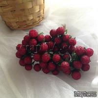 Ежевика, цвет красный, пучок из 12 штук