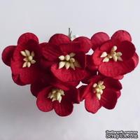 Цветы вишни, цвет красный, диаметр - 25мм, 5 шт.