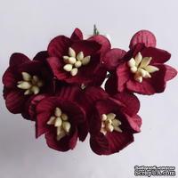 Цветы вишни, цвет бордовый, диаметр - 25мм, 5 шт.