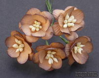 Цветы вишни, цвет шоколадно-коричневый, диаметр - 25мм, 5 шт.