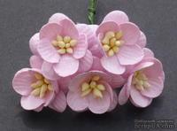 Цветы вишни, цвет нежно-розовый, диаметр - 25мм, 5 шт.