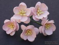 Цветы вишни, цвет бледно-розовый, диаметр - 25мм, 5 шт.