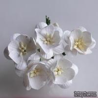 Цветы вишни, цвет белый, диаметр - 25мм, 5 шт.