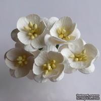 Цветы вишни, цвет слоновой кости, диаметр - 25мм, 5 шт.