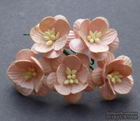 Цветы вишни, цвет персиковый, диаметр - 25мм, 5 шт.