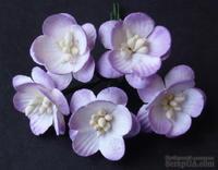 Цветы вишни, цвет сиреневый, диаметр - 25мм, 5 шт.