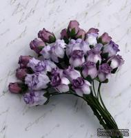 Набор роз с полуоткрытым бутоном от Thailand - лиловый микс, 10 шт