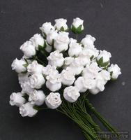 Буточники розы, цвет белый, диаметр - 8-10мм, 5 шт.
