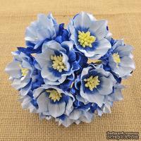Набор лотусов, бело-голубой, 35 мм, 5 шт.