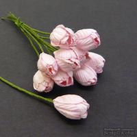 Тюльпан, цвет нежно-розовый, диаметр - 10мм, 5 шт.