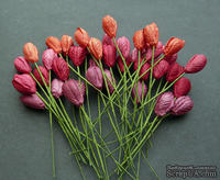Тюльпан, цвет красный микс, диаметр - 10мм, 10 шт.