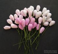 Набор тюльпанов (розовые оттенки), 10мм, 10 шт.
