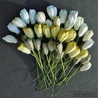 Набор тюльпанов (зеленые оттенки), 10мм, 10 шт.