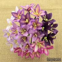 Набор лилий, микс цветов (сиреневый и фиолетовый оттенки), 30мм, 50 шт.