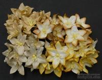 Набор лилий, микс цветов (осенние оттенки), 30мм, 40 шт.