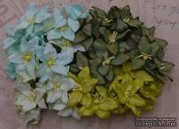 Набор лилий, микс цветов (зеленые оттенки), 30мм, 40 шт.