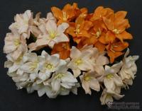 Набор лилий, микс цветов (персиковые и оранжевые оттенки), 30мм, 40 шт.