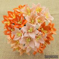 Набор лилий, микс цветов (персиковые и оранжевые оттенки), 30мм, 50 шт.