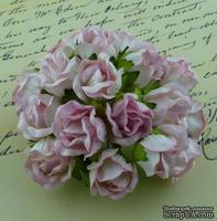 Бутоны большие дикой розы, цвет нежно-розовый, размер бутона 2 см, 1шт