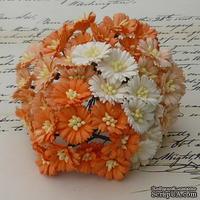 Маргаритки, цвет белый и оттенки оранжевого, диаметр - 25мм, 50 шт.