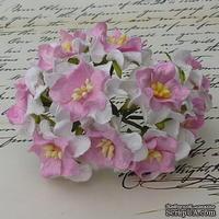 Гардения, 3,5-4 см, цвет белый с розовым центром, 1 шт.