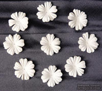 Цветы, цвет белый, диаметр - 30мм, 10 шт.