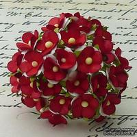 Цветочки любви - sweetheart, цвет белый с красной серединкой, диаметр - 15мм, 10 шт.