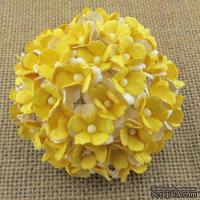 Набор двухслойных двухтоновых незабудок, оттенки желтого, 1,5 см, 10 шт.