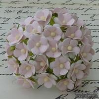 Цветочки любви - sweetheart, цвет нежно-розовый, диаметр - 15мм, 10 шт. - ScrapUA.com
