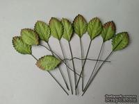 Листики, цвет зеленый, размер - 25мм, 10 шт.